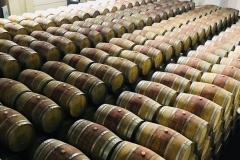 wine 42