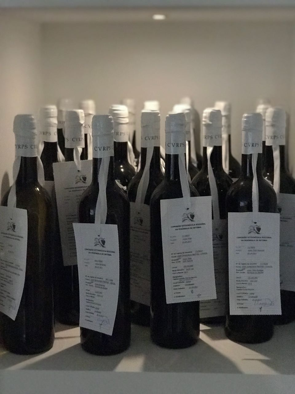 wine 44